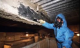 Asbestos Consultancy and Removal